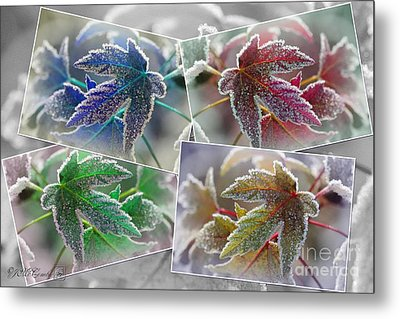 Frosted Maple Leaves Pop Art Shades Metal Print
