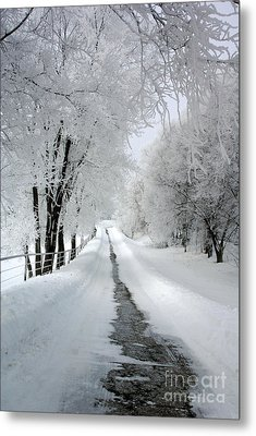 The Long Frosted Road Metal Print