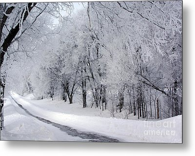 Frosted Trees Path Metal Print