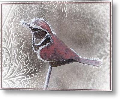 Metal Print featuring the photograph Frosty Cardinal by Patti Deters