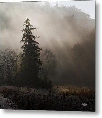 Frosty Foggy Morning Metal Print