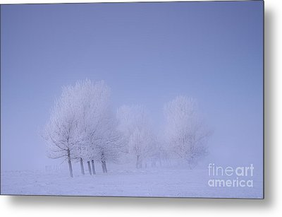 Frosty Friends Metal Print