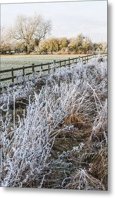 Metal Print featuring the photograph Frosty Landscape by David Isaacson