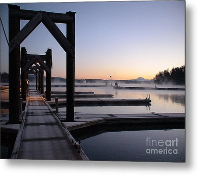 Metal Print featuring the photograph Frosty Morning by Laura  Wong-Rose