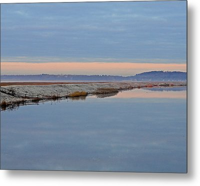 Frosty Morning Metal Print