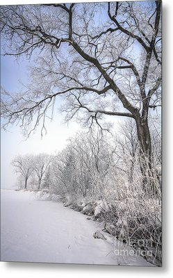 Metal Print featuring the photograph Frosty Shoreline by Kari Yearous