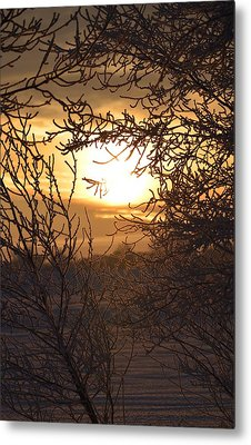 Frosty Sunrise Metal Print