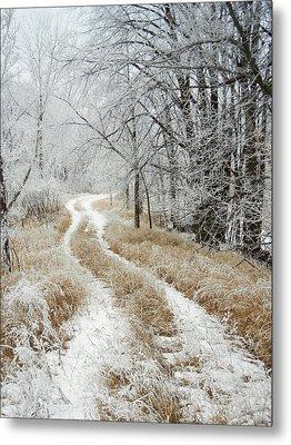 Frosty Trail Metal Print by Penny Meyers