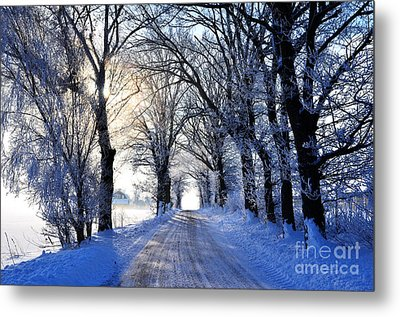 Frozen Alley Metal Print