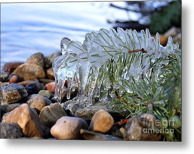 Frozen In Time Metal Print by Leone Lund