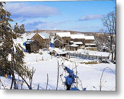 Frozen In Time Two In Color Metal Print