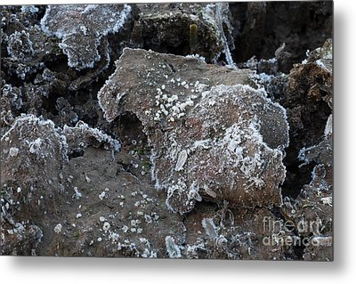 Metal Print featuring the photograph Frozen Mud by Marianne Jensen