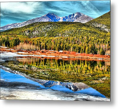 Frozen Reflection On Lily Lake Metal Print by Rebecca Adams