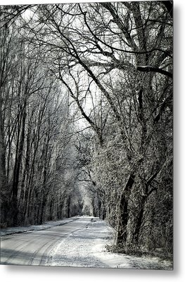 Frozen Road Metal Print by Wayne Meyer