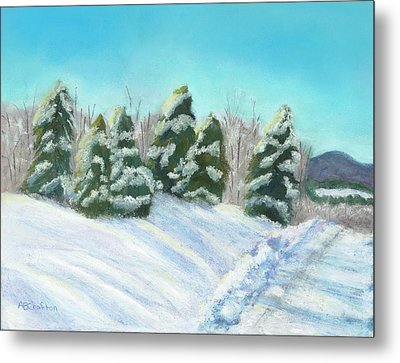 Frozen Sunshine Metal Print by Arlene Crafton
