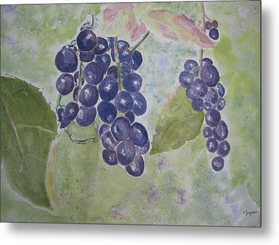 Fruits Of The Wine Metal Print