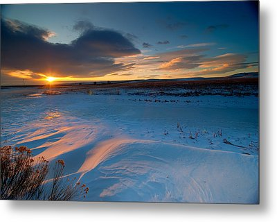Ft Collins Snow Sparkles Metal Print by Preston Broadfoot