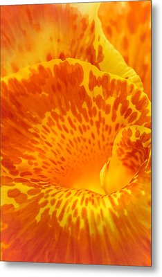 Full Color Canna Metal Print