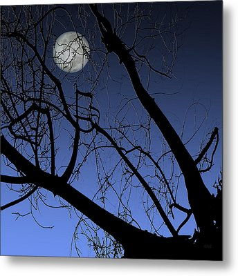 Full Moon And Black Winter Tree Metal Print by Ben and Raisa Gertsberg