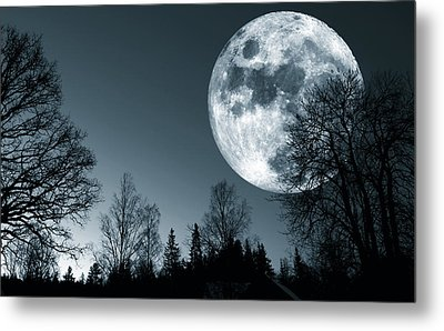 Full Moon Over Dark Forest Metal Print by Christian Lagereek