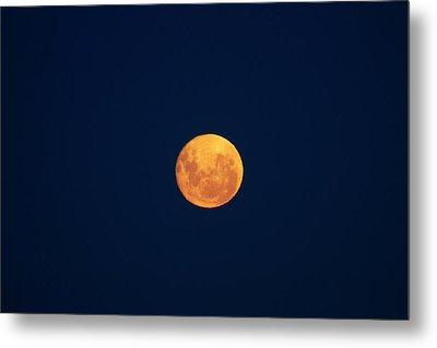 Full Moon Seen From Dunedin, South Metal Print by David Wall