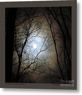 Full Moon Through The Trees Metal Print by Patricia Overmoyer