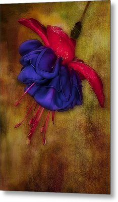 Fuschia Flower Metal Print by Susan Candelario
