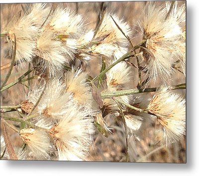 Fuzzy Metal Print by Erika Chamberlin