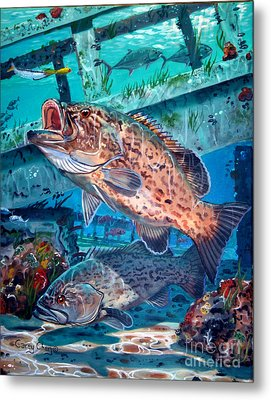 Gag Grouper In0030 Metal Print by Carey Chen