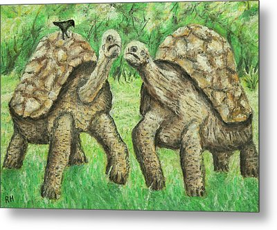 Galapagos Giant Tortoise Metal Print by Ronald Haber