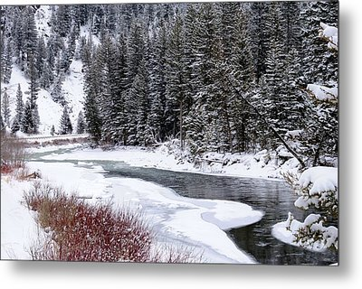 Gallatin River Metal Print by Meagan Suedkamp