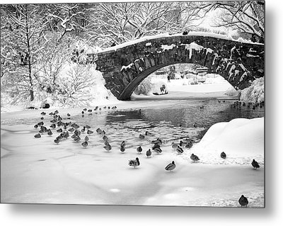 Gapstow Bridge In Snow Metal Print by Dave Beckerman