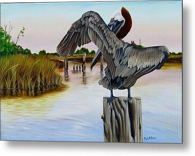 Gar Lake Pelican 2 Metal Print by Phyllis Beiser
