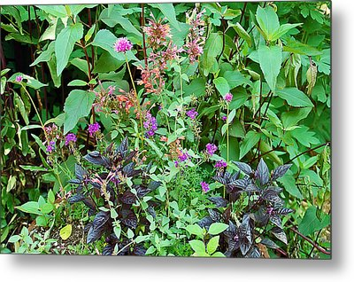 Garden Bouquet Metal Print by Aimee L Maher Photography and Art Visit ALMGallerydotcom