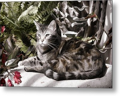 Metal Print featuring the digital art Garden Cat by Photographic Art by Russel Ray Photos