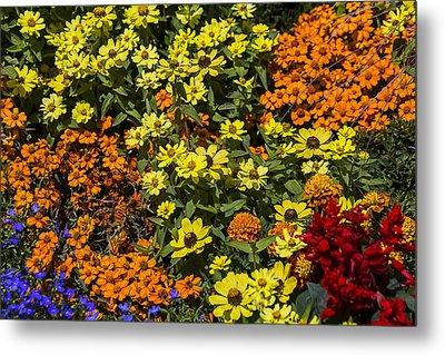 Garden Colors Metal Print by Garry Gay