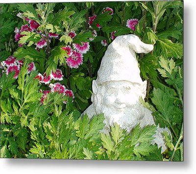 Metal Print featuring the photograph Garden Gnome by Charles Kraus