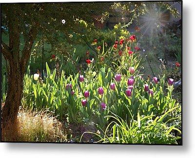 Metal Print featuring the photograph Garden by Leslie Hunziker