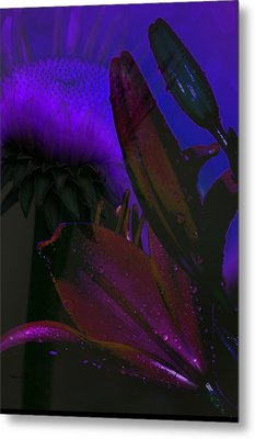 Garden Magic Metal Print