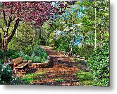 Garden Of Serenity Metal Print by Kenny Francis