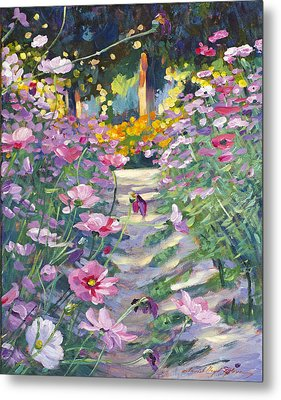 Garden Path Of Cosmos Metal Print by David Lloyd Glover