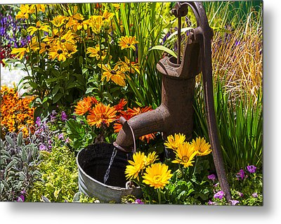 Garden Water Pump Metal Print by Garry Gay