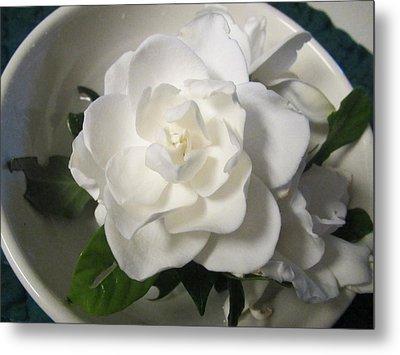 Gardenia Bowl Metal Print