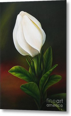 Metal Print featuring the painting Gardenia by Paula L