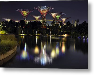 Gardens By The Bay Supertree Grove Metal Print by David Gn