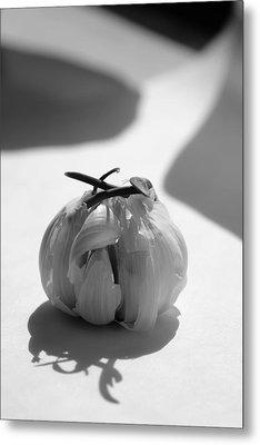 Garlic Cove B1 Metal Print
