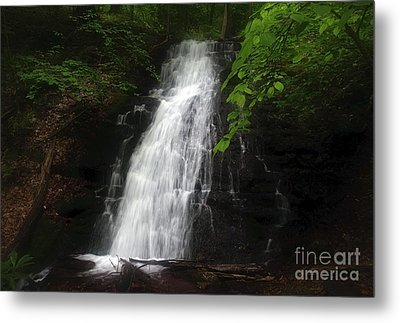 Metal Print featuring the photograph Garvey Spring Falls by Debra Fedchin