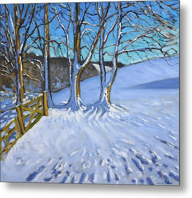 Gate And Trees Winter Dam Lane Derbyshire Metal Print by Andrew Macara