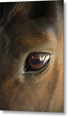 Gateway To A Horses Soul Metal Print by Shoal Hollingsworth