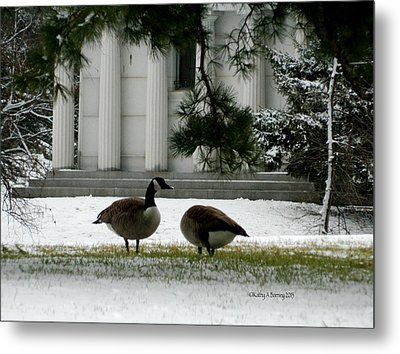Metal Print featuring the photograph Geese In Snow by Kathy Barney